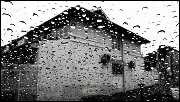 Olympus E-P1, shot through car windscreen in a rain, B&W art filter